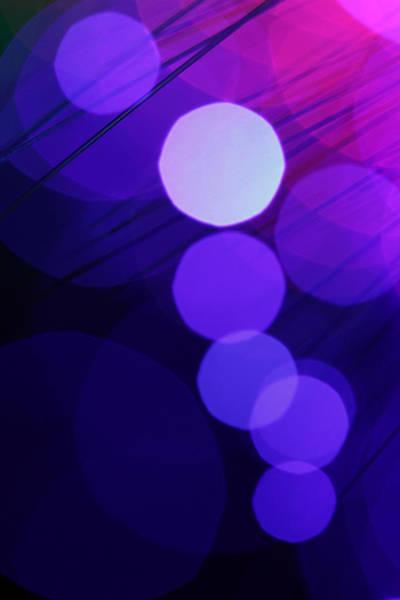 Photograph - Purple Haze by Dazzle Zazz