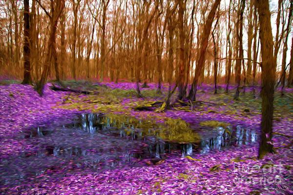 Purple Haze Digital Art - Purple Haze by Jim Hatch