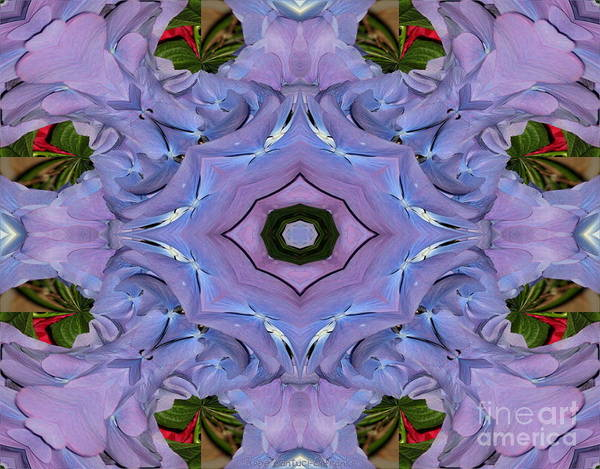 Photograph - Purple Hydrangea Flower Abstract by Rose Santuci-Sofranko