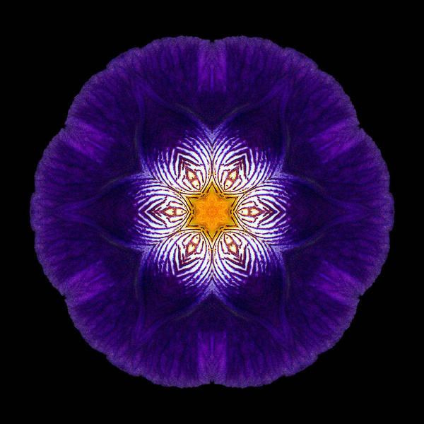 Photograph - Purple Iris II Flower Mandala by David J Bookbinder