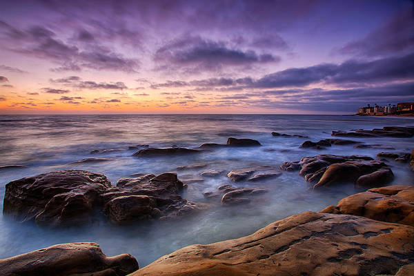 Photograph - Purple Majesty No Mountain by Peter Tellone