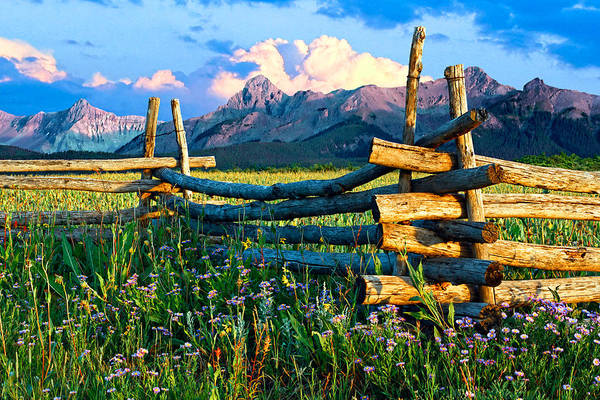 Photograph - Purple Mountains And Flowers by Rick Wicker
