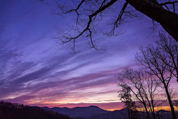 Photograph - Purple Mountains by Maria Robinson