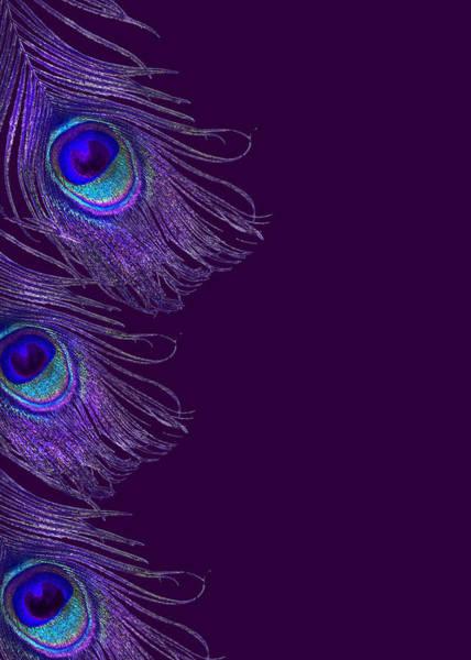 Pea Digital Art - Purple Peacock Phone Case by Jane Schnetlage