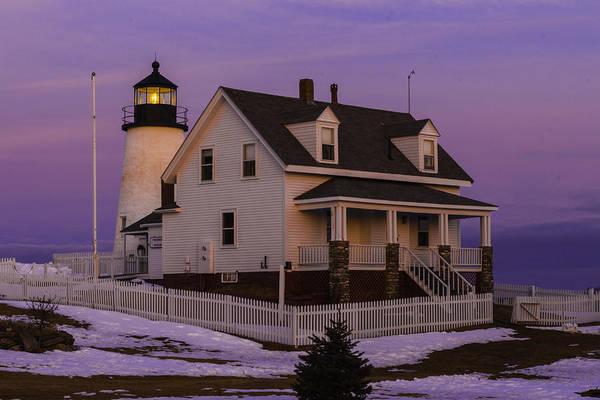 Photograph - Purple Pemaquid by David Hufstader