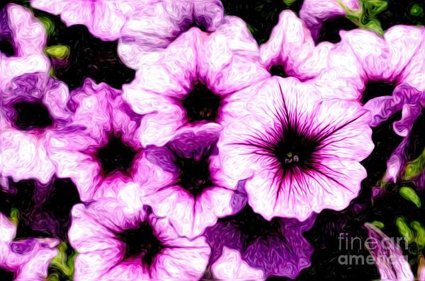 Petunias Photograph - Purple Petunia Flowers Digital Painting by Paul Velgos