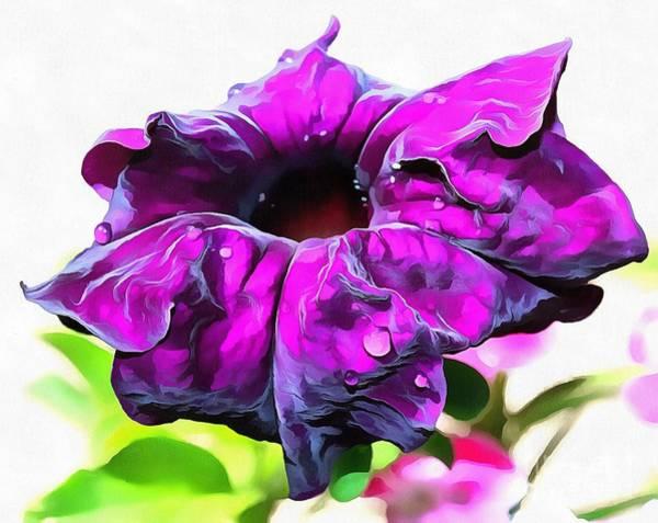 Petunias Photograph - Purple Royalty by Krissy Katsimbras