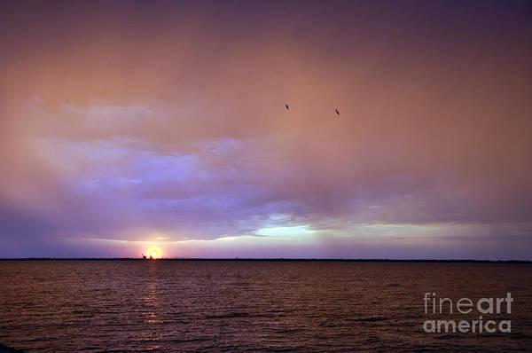 Photograph - Purple Sky by Cheryl McClure