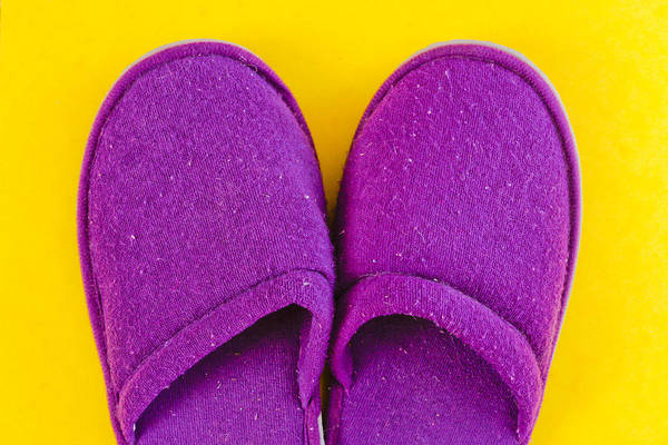 Lady Slipper Photograph - Purple Slippers by Tom Gowanlock