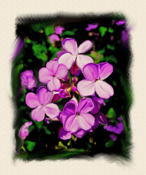 Wall Art - Painting - Purple Wildflowers by Dave Sandt