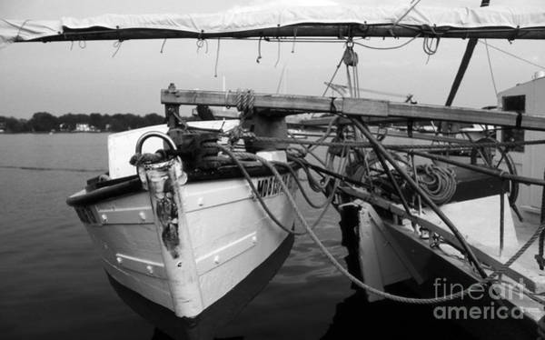 Sailing Terms Photograph - Push Boat by Skip Willits