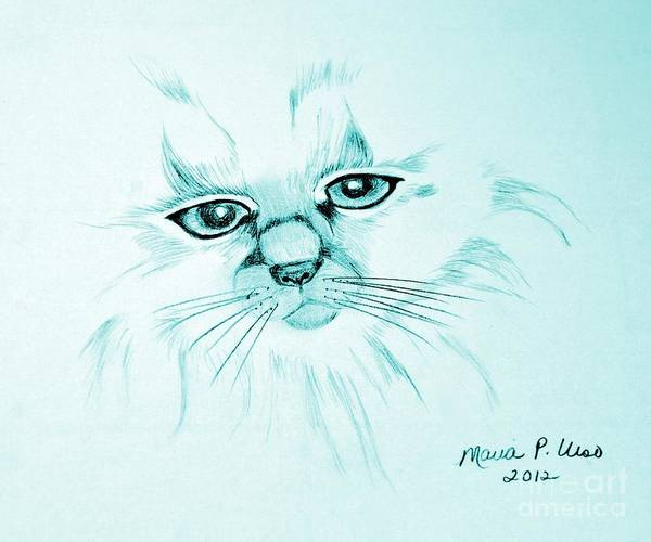 Pussycat Drawing - Pussycat Blues by Maria Urso