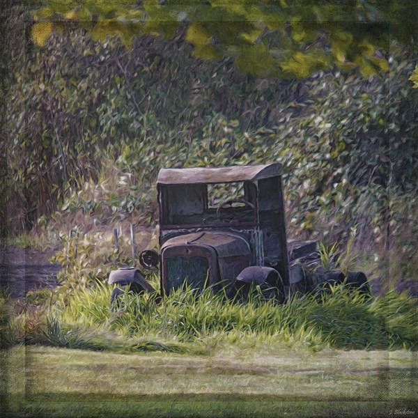 Photograph - Put Out To Pasture by Jordan Blackstone