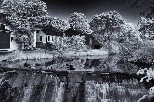 Photograph - Putney Pond In Black And White by Tom Singleton