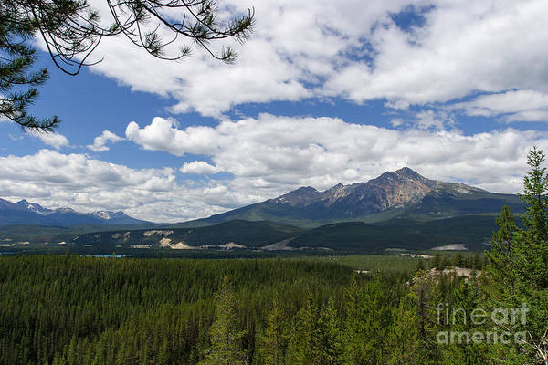 Photograph - Pyramid Mountain From Maligne Road Overlook by Charles Kozierok