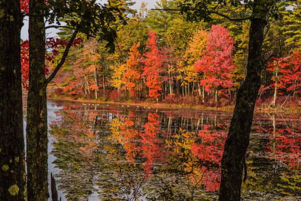 Photograph - Quabbin Reservoir Fall Foliage by Jeff Folger