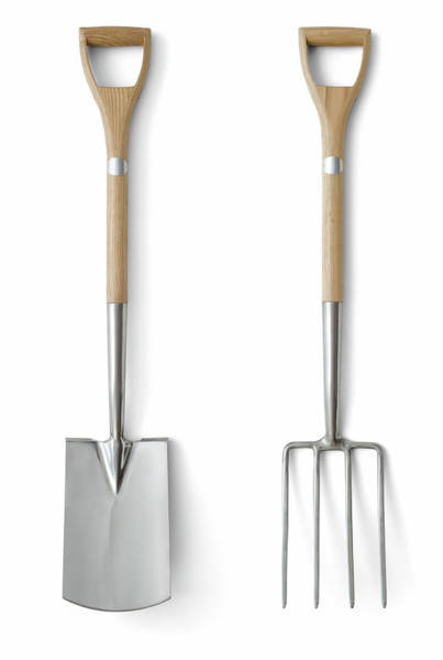 Trowel Photograph - Quality Garden Tools by Markswallow