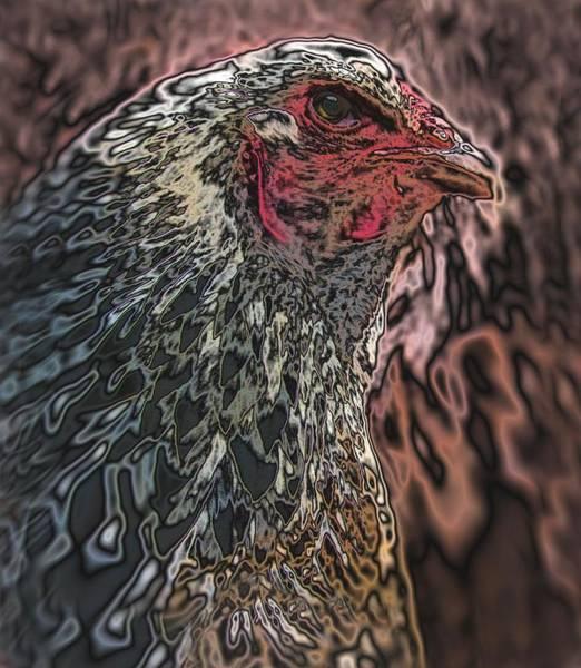 Photograph - Quantum Hen by Lora Fisher