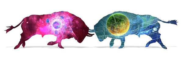 Different Animals Photograph - Quantum Mechanics by Harald Ritsch