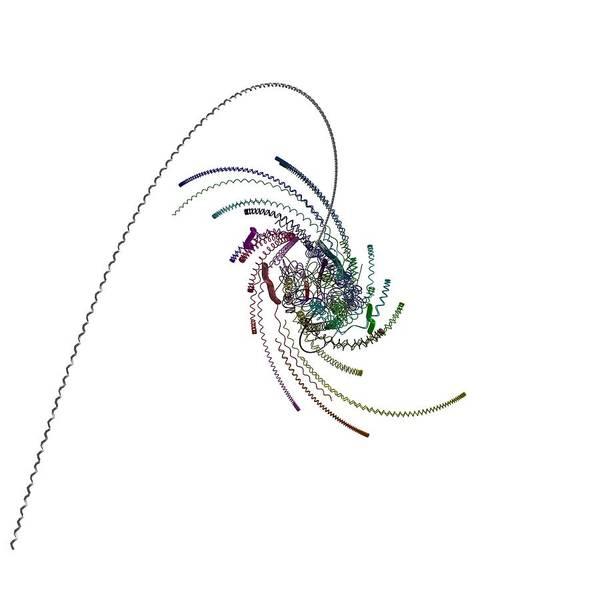 Digital Art - Quaternionic Blow 1 by Marc Philippe Joly