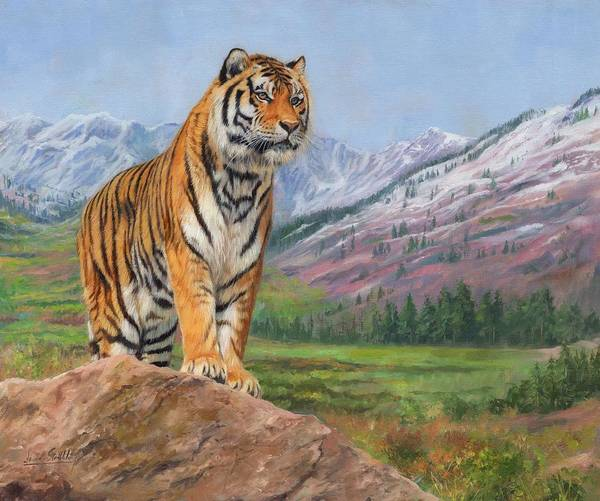 Siberian Tiger Wall Art - Painting - Queen Of Siberia by David Stribbling