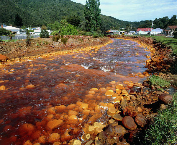Mining Photograph - Queen River Polluted From Copper Mining by Simon Fraser/science Photo Library