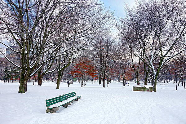 Wall Art - Photograph - Queen's Park by Valentino Visentini