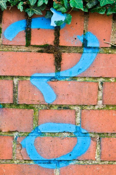 Blues Alley Photograph - Question Mark by Tom Gowanlock