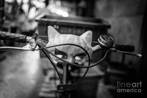 Wall Art - Photograph - Quick To The Catmobile by Dean Harte
