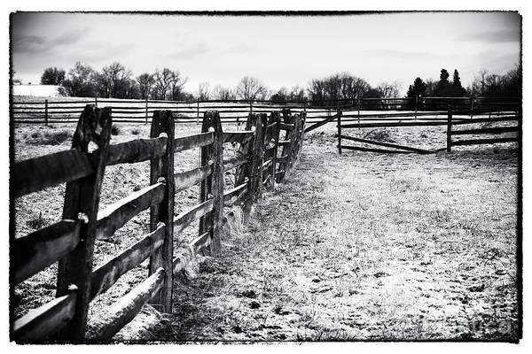Gettysburg Address Wall Art - Photograph - Quiet At Gettysburg by John Rizzuto