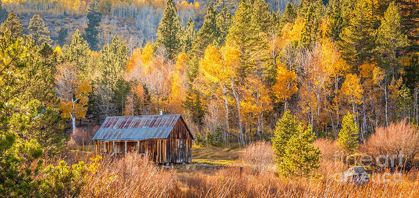 Photograph - Quiet Cabin by Charles Garcia