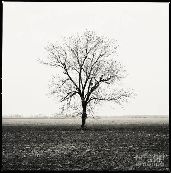 Desolation Photograph - Quiet Desperation by Scott Pellegrin