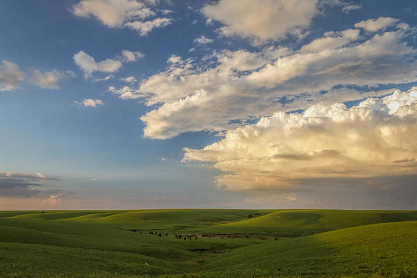 Photograph - Quiet On The Prairie by Scott Bean