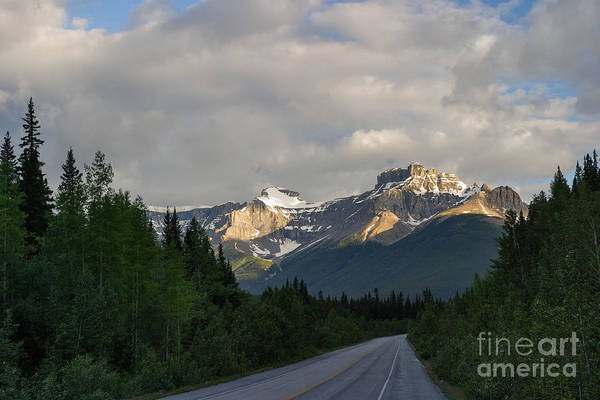 Photograph - Quiet Parkway by Charles Kozierok