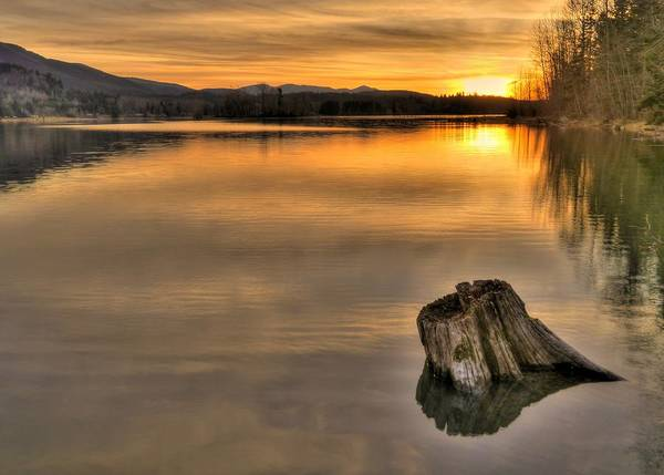 Wall Art - Photograph - Quiet Times  by Peter Mooyman