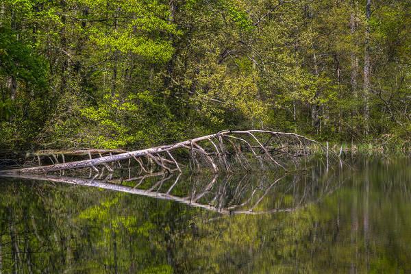 Chilhowee Photograph - Quiet Waters by Debra and Dave Vanderlaan