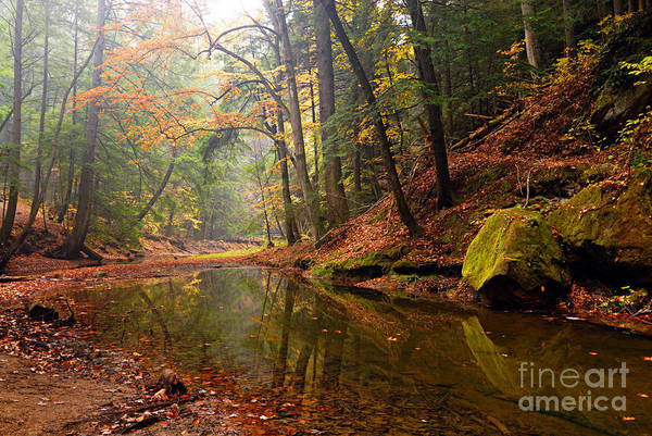 Photograph - Quiet Waters by Larry Ricker