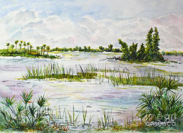 Painting - Quiet Waters Park Deerfield Beach Fl by Janis Lee Colon