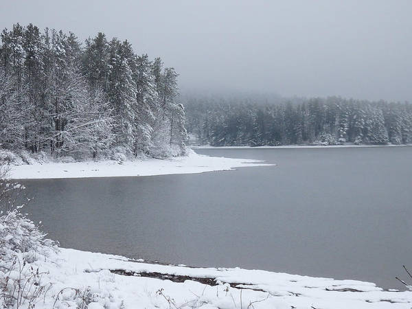 Photograph - Quiet Winter Scene At The Lake 2 by Nancy De Flon