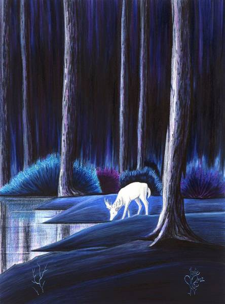 Drawing - Quietude by Danielle R T Haney