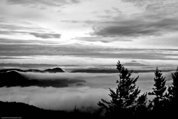 Photograph - Quietude by Joseph Noonan