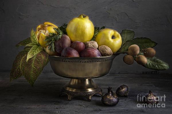 Walnut Photograph - Quince by Elena Nosyreva