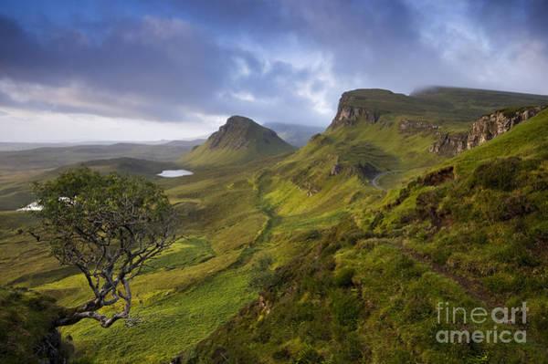 Photograph - Quiraing View by David Lichtneker