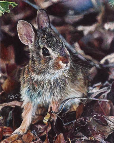 Wild Rabbit Painting - Rabbit In The Woods by Joshua Martin