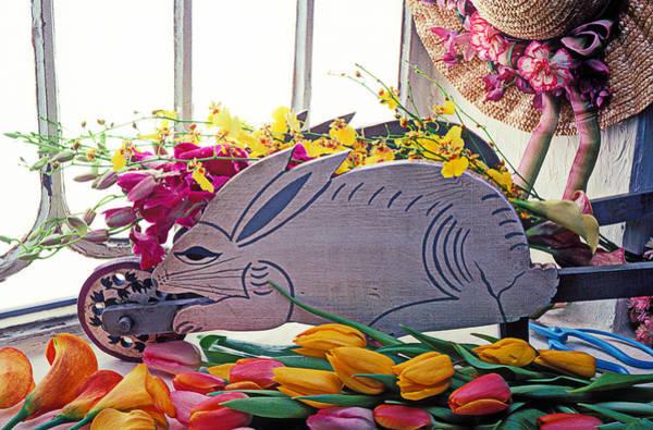 Calla Photograph - Rabbit Wheel Barrow by Garry Gay