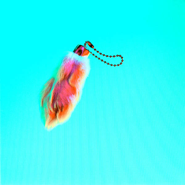Bad Hair Wall Art - Photograph - Rabbit's Foot Keychain by Yo Pedro