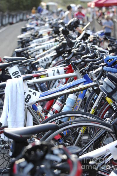Bicycle Rack Photograph - Race Bikes by Micah May