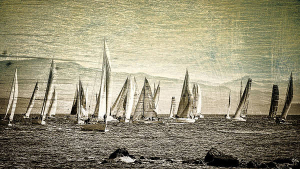 Photograph - Race Day by Roxy Hurtubise