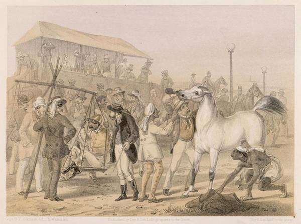 Wall Art - Drawing - Race Meeting On A British Station by Mary Evans Picture Library