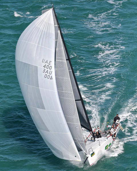Photograph - Race Week Key West by Steven Lapkin